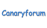 The Canary Forum